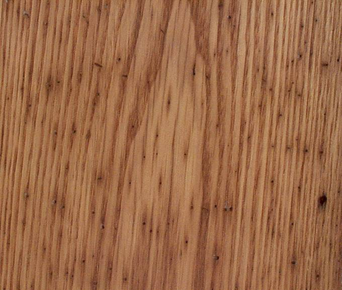 Detail of Wormy Chestnut Lumber