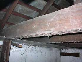 Hand hewn Oak Joists and Rafters